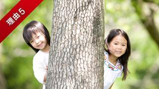 木に隠れる子供達